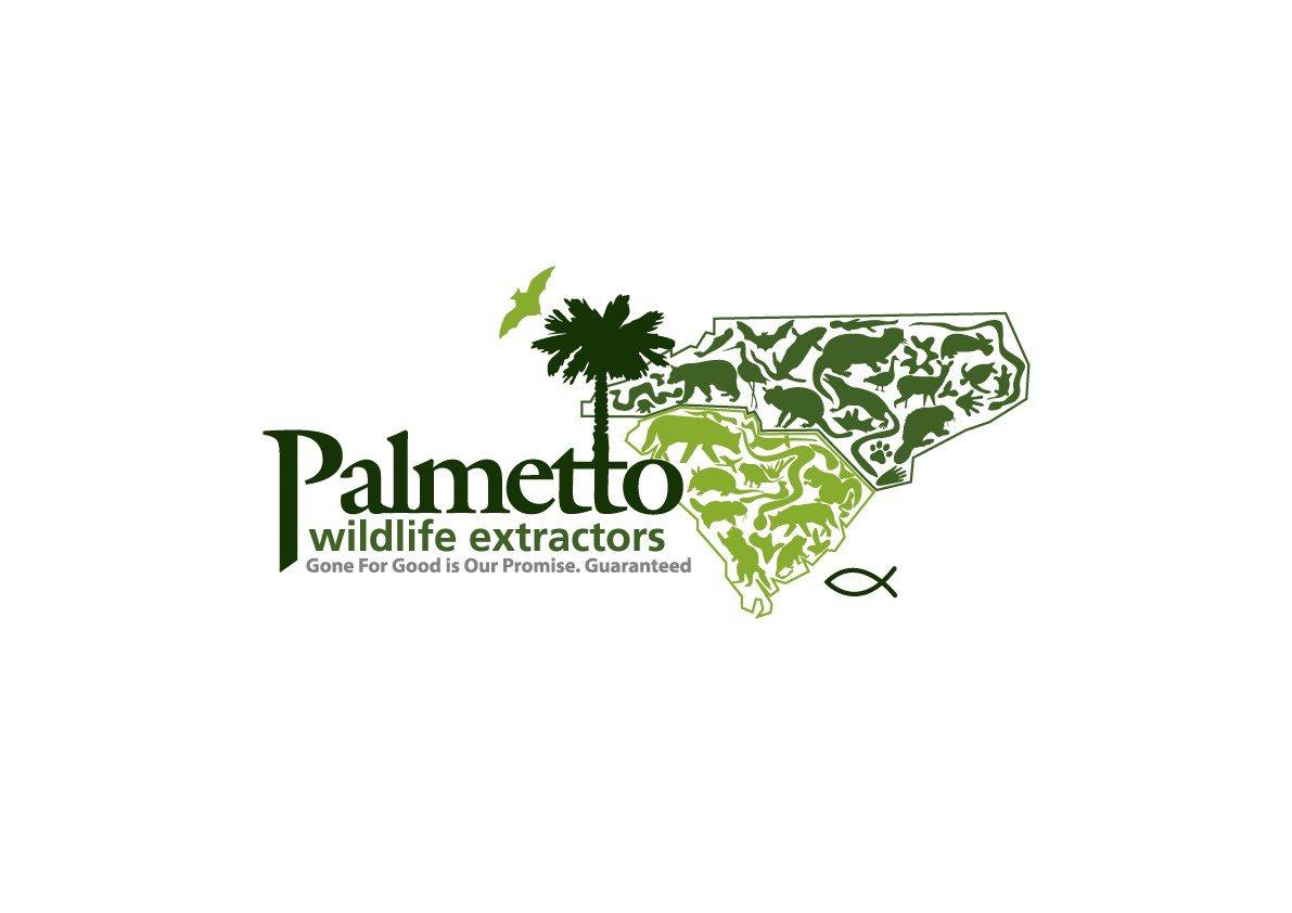 palmetto-wildlife