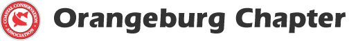 chapters-orangeburg-logo
