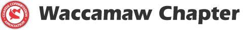 chapters-waccamaw-logo